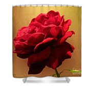 Scarlet Flamenco Shower Curtain