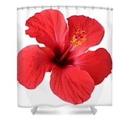Scarlet Hibiscus Tropical Flower  Shower Curtain