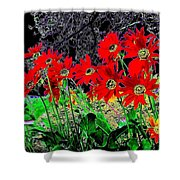 Scarlet Night Shower Curtain