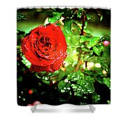 Scarlet Raindrops Shower Curtain
