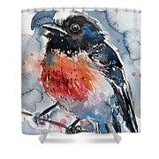Scarlet Robin Shower Curtain