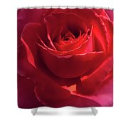 Scarlet Rose Flower Shower Curtain