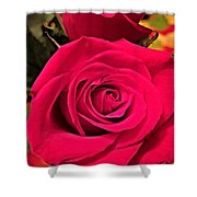 Scarlet Roses Shower Curtain