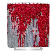 Scarlet Squiggle Shower Curtain