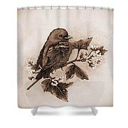 Scarlet Tanager - Tint Shower Curtain