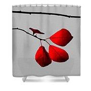 Scarlet Triad Shower Curtain