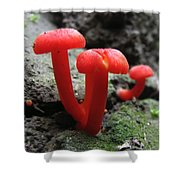 Scarlet Waxcap Shower Curtain