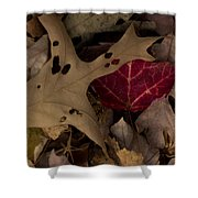 Scary Leaves Shower Curtain
