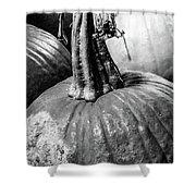 Scary Stem Pumpkin Shower Curtain