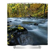 Scattered Along The Way Shower Curtain