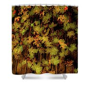 Scattered  Shower Curtain