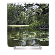 Scattered Sun On Blind River Shower Curtain