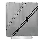 Scavenger Shower Curtain