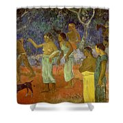 Scene From Tahitian Life Shower Curtain