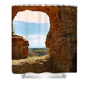 Scene Through Antiquity Shower Curtain
