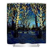 Scenery After Rain Shower Curtain
