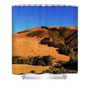 Scenic California Shower Curtain