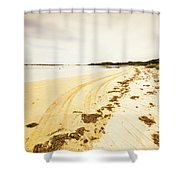 Scenic Coastal Calm Shower Curtain
