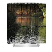 Scenic Elder Lake Shower Curtain