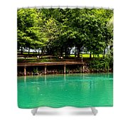 Scenic Swans Shower Curtain
