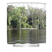 Scenic Trees Shower Curtain