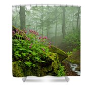 Scent Of Spring Shower Curtain by Evgeni Dinev