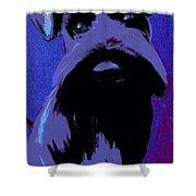 Schnauzer Puppy Poster Shower Curtain