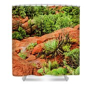 Schnebly Hill 07-057 Shower Curtain