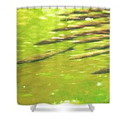 School Time Shower Curtain