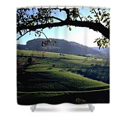 Schwarzwald Shower Curtain