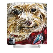Scooter From Muttville Shower Curtain