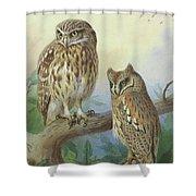 Scops Owl By Thorburn Shower Curtain