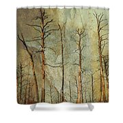 Scorched Forest Shower Curtain