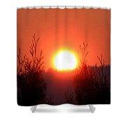 Scorching Sun Shower Curtain