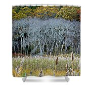 Scorton Creek Treeline Shower Curtain