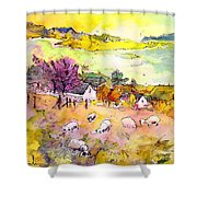 Scotland 20 Shower Curtain