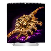 Scorpion Shell Shower Curtain