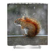 Screaming Squirrel  Shower Curtain
