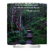 Scriture And Picture Psalm 119 133 Shower Curtain