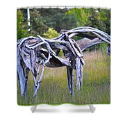 Sculpture Of Horse Shower Curtain