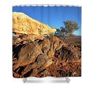 Sculpture Park Broken Hill Shower Curtain