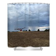 Sculptures And Rain Shower Curtain