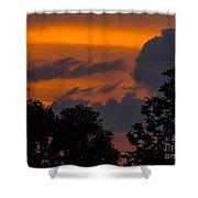 Mulberry Tree Sunrise Shower Curtain