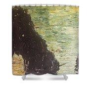 Sea Arch Shower Curtain