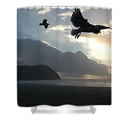 Sea Birds 2 Shower Curtain
