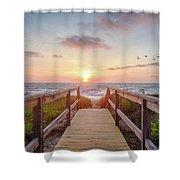 Sea Birds At Sunrise Shower Curtain