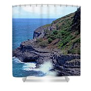 Sea Cave And Nesting Boobies Shower Curtain