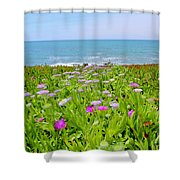 Sea Daisy Trail Shower Curtain