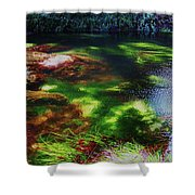 Sea Grass Shower Curtain