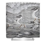 Sea Gulls Dodging The Ocean Waves Shower Curtain